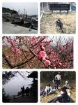 18-03-03-21-07-43-399_deco.jpg